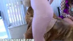 DANCING BEAR - This Bombshells thirtieth B-day Birthday Celebration Goes Crazy When Precisely The Be